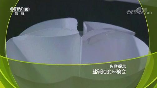 《走近科学》 20190328 盐碱地变米粮仓
