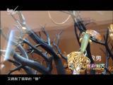 炫彩生活(美食汽车版) 2019.04.02 - 厦门电视台 00:12:56