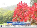 午间新闻广场 2019.04.08 - 厦门电视台 00:20:52
