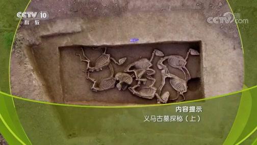 义马古墓探秘(上) 00:38:51