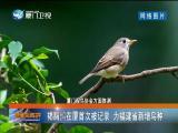 新闻斗阵讲 2019.04.12 - 厦门卫视 00:24:34