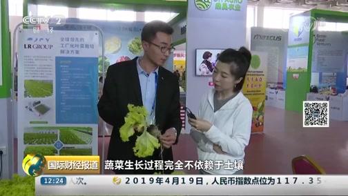 [国际财经报道]农业新科技表态山东寿光菜博会