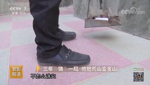 [致富经]赵国玺的猪厂正面临关键阶段