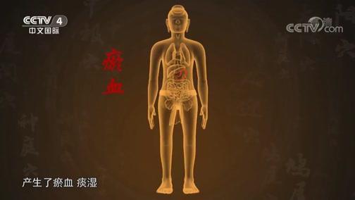 [中华医药]脾胃科常用药材——石斛