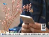 特区新闻广场 2019.06.24 - 厦门电视台 00:24:12