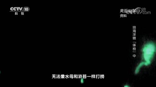 """《走近科学》 20190702 给海洋做""""体检""""(中)"""