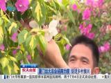 厦视新闻 2019.07.03 - 厦门电视台 00:24:59
