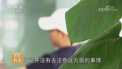 """《聚焦三农》 20190709 网约农机 你""""约""""对了吗"""
