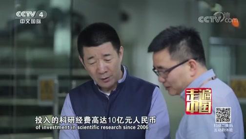 《走遍中国》 20190802 5集系列片《穿衣革命》(5) 穿出中国范儿