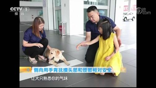 《生活提示》 20190803 谨防夏季宠物咬伤