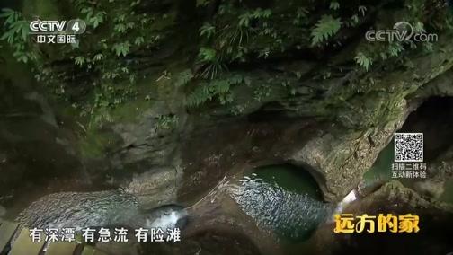 [远方的家]系列节目《大好河山》——秘境之踪 金刀峡溪降