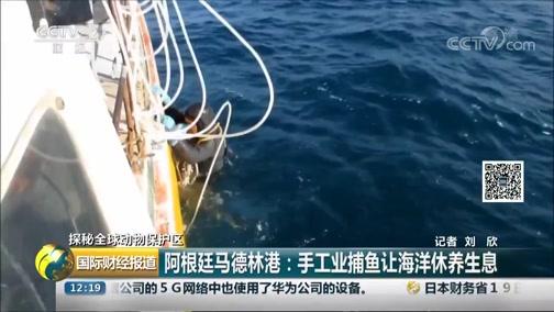 [国际财经报道]探秘全球动物保护区 阿根廷马德林港:手工业打鱼让海洋休摄生息