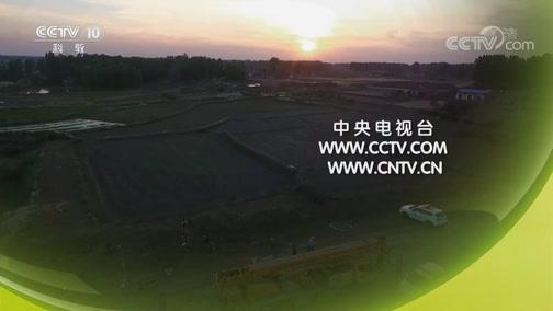 《探索发现》 20190821 2019考古进行时 第三季 长丰古墓发掘记(上)