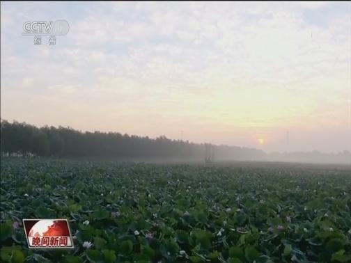 [视频]河北廊坊:筑牢生态屏障 发展绿色经济