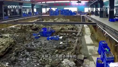 [开讲啦]青年提问孙键:博物馆里发掘仍然在水下进行有什么特殊用意?