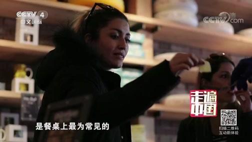 《走遍中国》 20190912 移动支付出海记