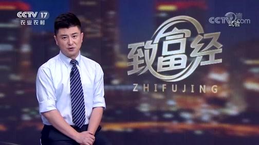 [致富经]刘继华旅游时定下投资计划