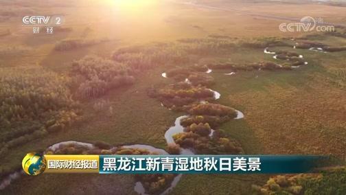 [国际财经报道]黑龙江新青湿地秋日美景