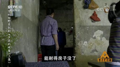 《普法栏目剧》 20191008 希望的田野系列剧·芦花的晚餐(上集)