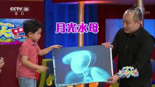 [快乐大巴]刘季桐分享海洋生物知识