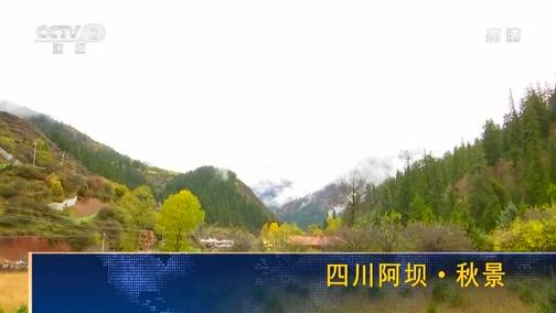[经济信息联播]四川阿坝·秋景