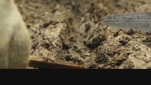 [百家讲坛]《镇馆之宝》第十三集《虎纹戈上的未解之谜》预告