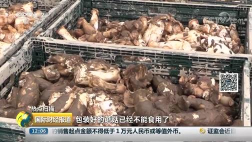 [国际财经报道]热点扫描 日本灾区下雨 灾后重建启动 家当恢复难