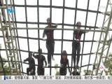 特区新闻广场 2019.10.26 - 厦门电视台 00:23:11