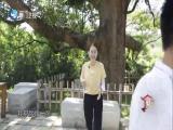 七淘乐悠悠·不一样的大帽山 闽南通 2019.10.26 - 厦门卫视 00:24:54
