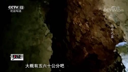《见证》 20191122 逐梦火焰蓝(四)