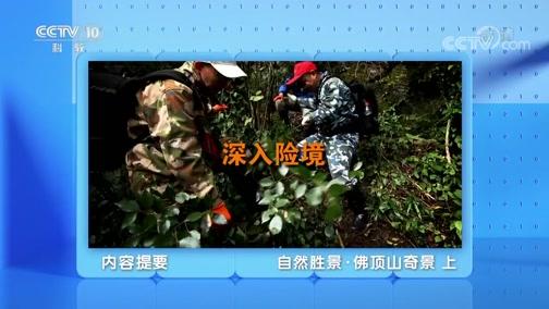 《地理·中国》 20200104 自然胜景·佛顶山奇景 上