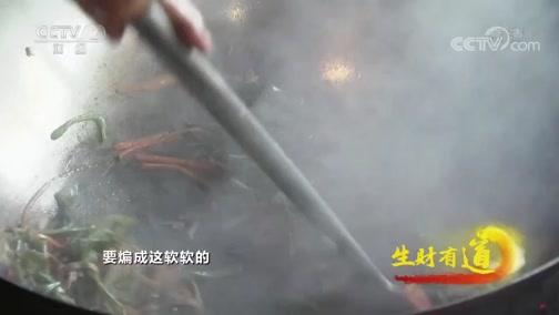 《生财有道》 20200206 云南勐海:民族风情茶文化 演绎魅力西双版纳