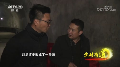 《生财有道》 20200207 河南陕州:灯会美 果醋香 创富忙