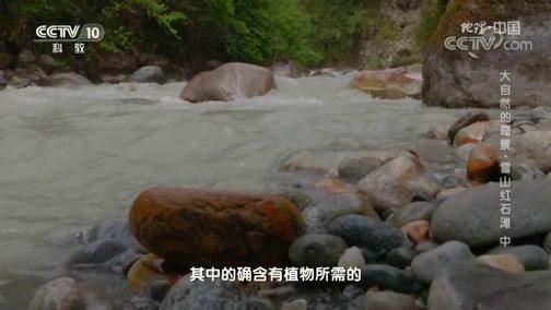 《地理·中国》 20200222 大自然的奇景·雪山红石滩 中