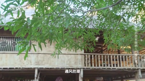 《跟着书本去旅行》 20200428 美丽的西双版纳——竹楼人家