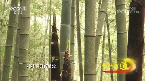 《生财有道》 20200504 复工复产看各地 福建武夷山:茶旅结合 生态优先