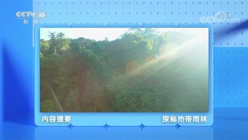 《跟着书本去旅行》 20200507 美丽的西双版纳——探秘热带雨林