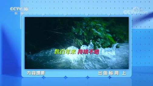 《地理·中国》 20200518 出鱼秘洞 上