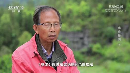 《地理·中国》 20200519 出鱼秘洞 下