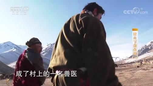 《攻坚日记》 20200704 雪山下的生活(1)