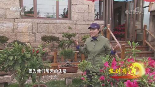 《生财有道》 20200812 生态中国沿海行——山东荣成:爽心悦目 生财有路