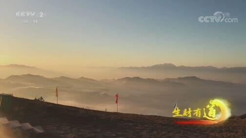《生财有道》 20200814 生态中国沿海行——浙江临海:财富路路通 有海有陆有天空