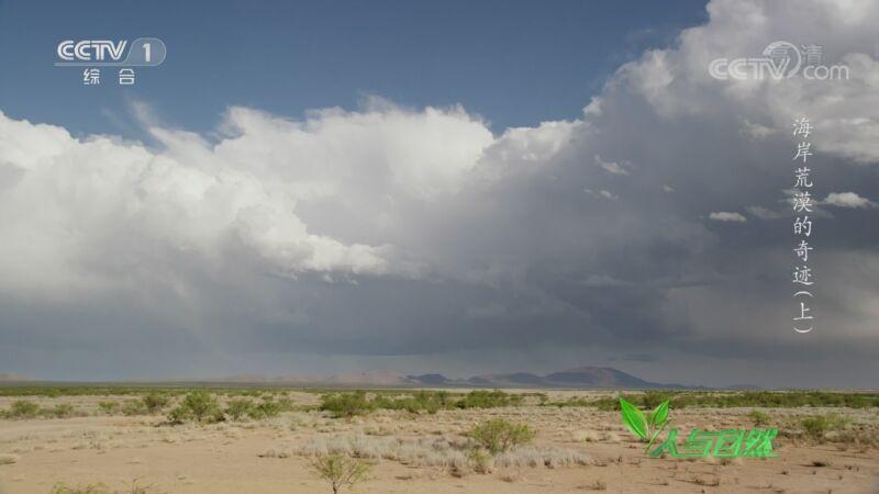 《人与自然》 20200915 海岸荒漠的奇迹(上)