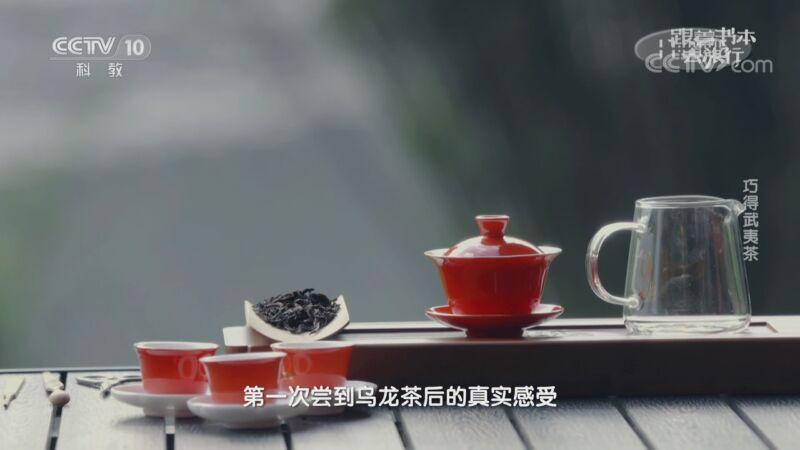 《跟着书本去旅行》 20200922 巧得武夷茶