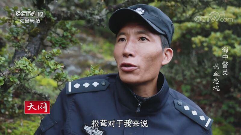 《天网》 20201002 系列纪录片《蜀中警英·热血忠魂》