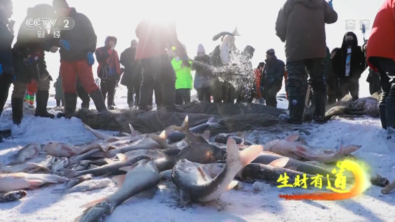 《生财有道》 20210201 千年渔猎文化 魅力冰雪经济