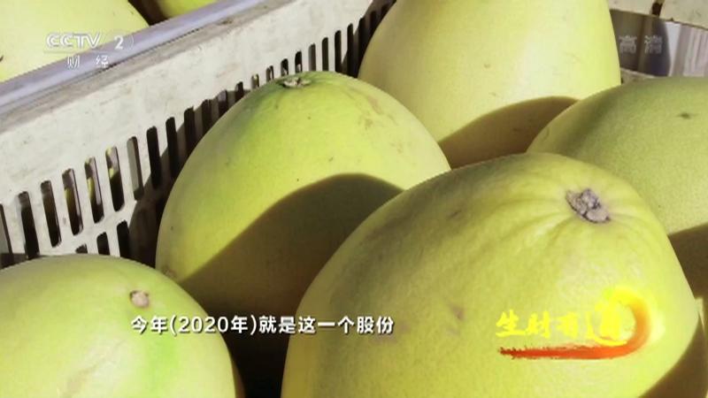 《生财有道》 20210310 乡村振兴中国行:一方水土 特产生财