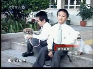 [绿色空间]狗医生与孩子们6