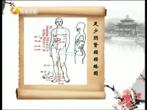 《中华好养生》 20130108 冬三月里的肾脏