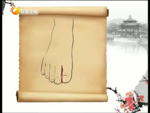 《中华好养生》 20130112 穴位与健康——太冲穴